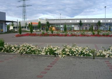 alte gärten 504